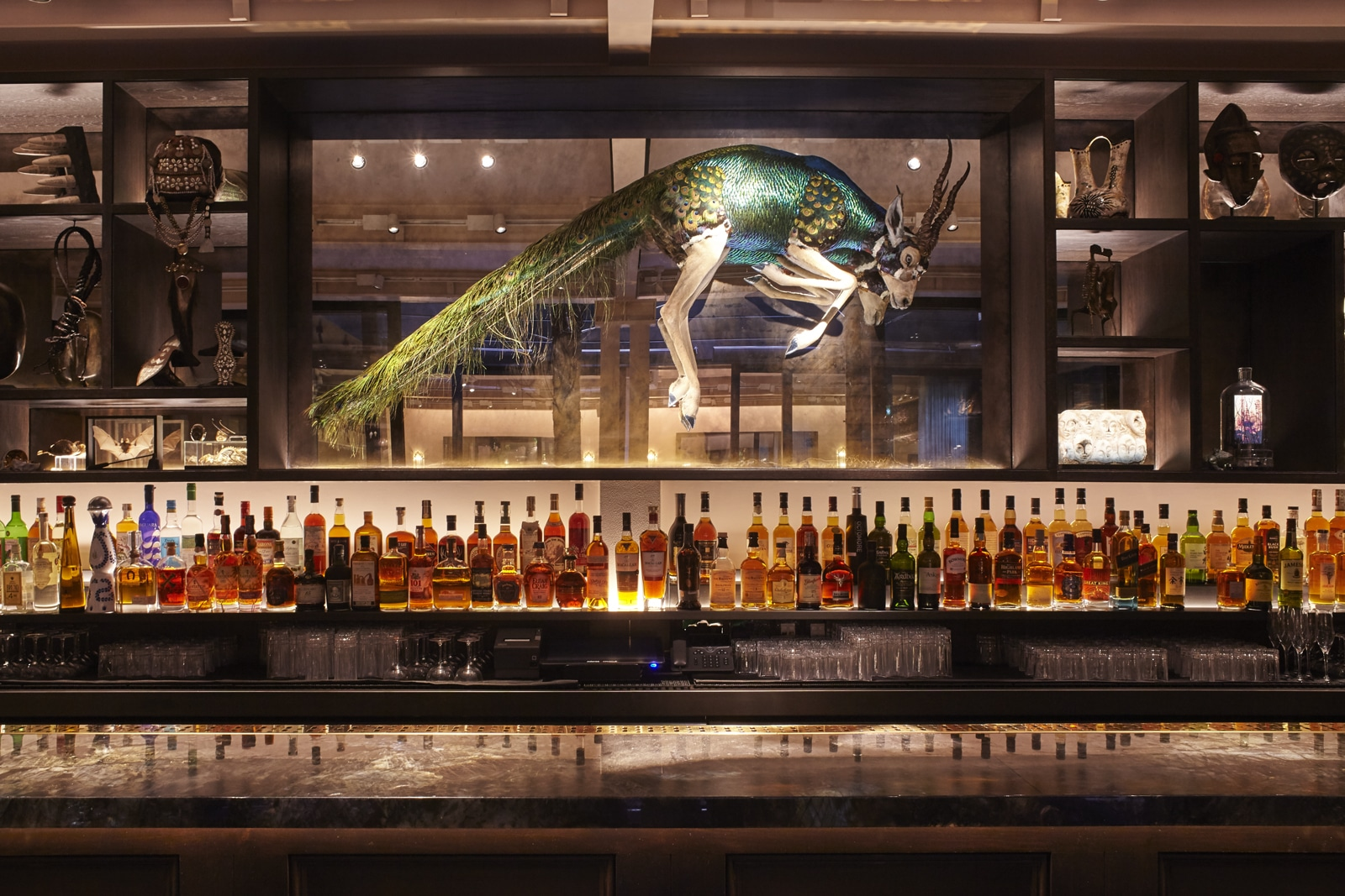 A gazellecock (hybrid peacock and gazelle) is mounted in a glass box above a row of spirits on the back of the bar at Waeska, London