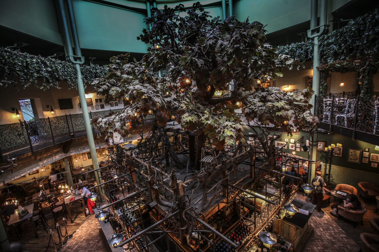 The main bar at the Botanist Newcastle, featuring a tree under a glass domed ceileing